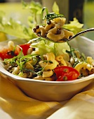 Pasta salad with lentils, vegetables and sorrel