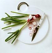 Rote Frühlingszwiebeln, angeschnitten mit Messer auf Brett