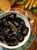 Zuppa di cozze (mussel soup), Liguria, Italy