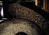 Olive Oil Production; Olive Pressing