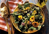 Spring Salad with an Assortment of Flower Blossoms