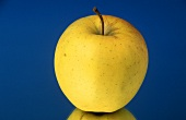 One Golden Delicious Apple