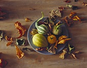 Four Assorted Gourds on a Plate with Fall Leaves