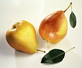 Two Whole Williams Pears