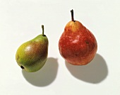 Two Assorted Pears; Bartlett and Red Pear