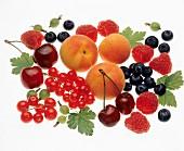 Fruit Still Life; Peaches