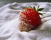 Fresh Strawberry Rolled in Sugar