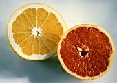 White Grapefruit Half; Pink Grapefruit Half