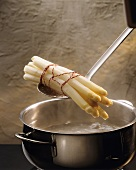 Lifting White Asparagus from Pot of Boiling Water