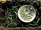 Green Beans in a Baket