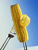 Corn on the Cob on Fork; Butter Curl