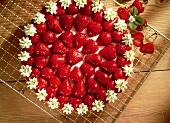 Strawberry gateau with fresh strawberries & cream rosette edge