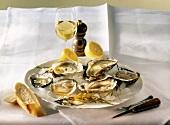 Austern & Zitrone auf Eis auf Teller, m.Weinglas auf Tisch