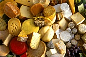 Still Life of Several Assorted Cheeses