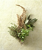 Bouquet of Assorted Herbs