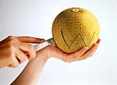 Cutting a galia melon in half with a zigzag edge