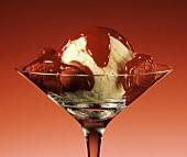 Vanilla Ice Cream with Red Raspberry Sauce