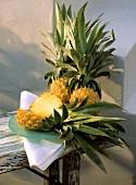 Drei Ananas, davon eine halbiert auf Teller, auf Holztisch