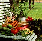 Fresh Garden Vegetables on a Chair Outside