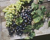 Green and Purple Grapes on a Wood Surface