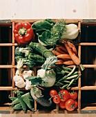 Assorted Vegetables on Wooden Shelves