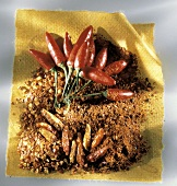 Fresh and Dried Chili Peppers with Chili Powder