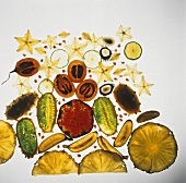 Slices of tropical fruit on sheet of glass