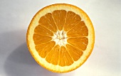 Cross Section of an Orange