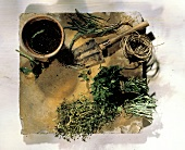 Assorted Herbs with Tools For Planting