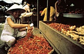 Asian Woman Buying Chili Peppers at the Market