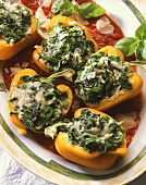 Peppers stuffed with spinach and parmesan on tomato sauce