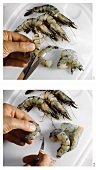 Shelling shrimps (cutting open shell & removing intestine)