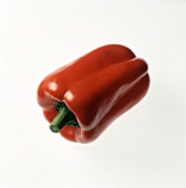 A Single Red Bell Pepper