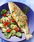 Trout, Miller's wife style with potato & radish salad