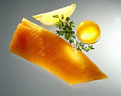 Salmon Trout Fillet with Lemon, Herbs and an Egg Yolk