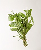 Punch of herbs with Provencal herbs