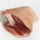Knuckle of pork