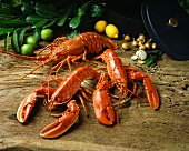 Three Lobsters with Herbs, Lemons and Limes