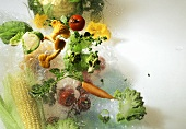 Chanterelles & fresh vegetables with dewdrops on sheet of glass