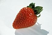 Single Fresh Strawberry