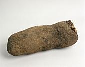 Eine afrikanische Yamwurzel