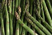 Many Green Asparagus Spears