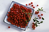Lingonberries on a square porcelain plate and some next to it