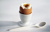 Soft Boiled Egg with Egg Cup and Spoon