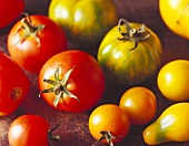 Various types of tomatoes; red, yellow and greenish