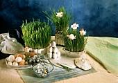 Easter decoration: eggs, chive pots, flowers, sugar eggs