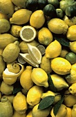 Zitronen, Zitronenhälfte, -viertel & Limetten (Ausschnitt)