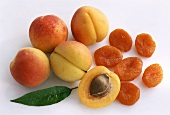 Apricots; Dried and Fresh