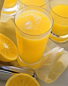Tall Glass of Fresh Squeezed Orange Juice