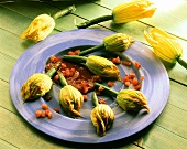Stuffed courgette flowers with tomato sauce on blue plate